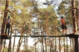 Płock Atrakcja park linowy Kraina Wrażeń
